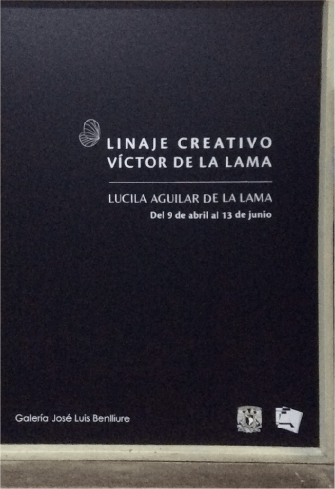 Proyecto Lucy